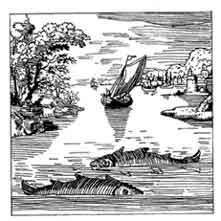 PECES. Lambsprick, De lapide philosophico, Francfort 1625 En la iconografía alquimica, dos peces en un rio representan las esencias primarias azufre y mercurio. Dibujo y adaptación de Ex libris personal sobre el original