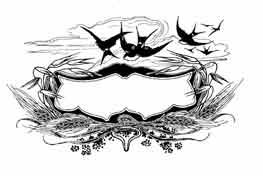 Dibujo y adaptación de Ex libris personal sobre el original