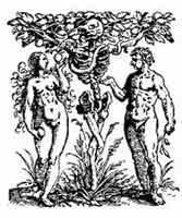 EL ÁRBOL DEL CONOCIMIENTO. John bell. Inglaterra1751. Dibujo y adaptación de Ex libris personal sobre el original