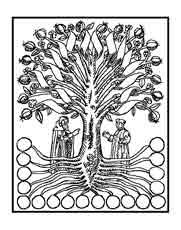 El árbol del conocimiento. Ramón Llull