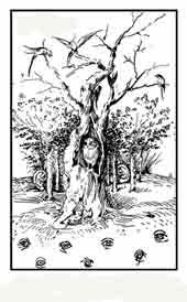 CAMPO CON OJOS Y BOSQUE CON OREJAS. El Bosco.  Dibujo y adaptación de Ex libris personal sobre el original