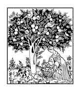 GRANADO. Imagen de el Tacuinum Sanitatis es un manual medieval sobre salud y bienestar, basado en el Taqwim al‑sihha, un tratado médico árabe de Ibn Butlan. Dibujo de Ex Libris personal sobre el original